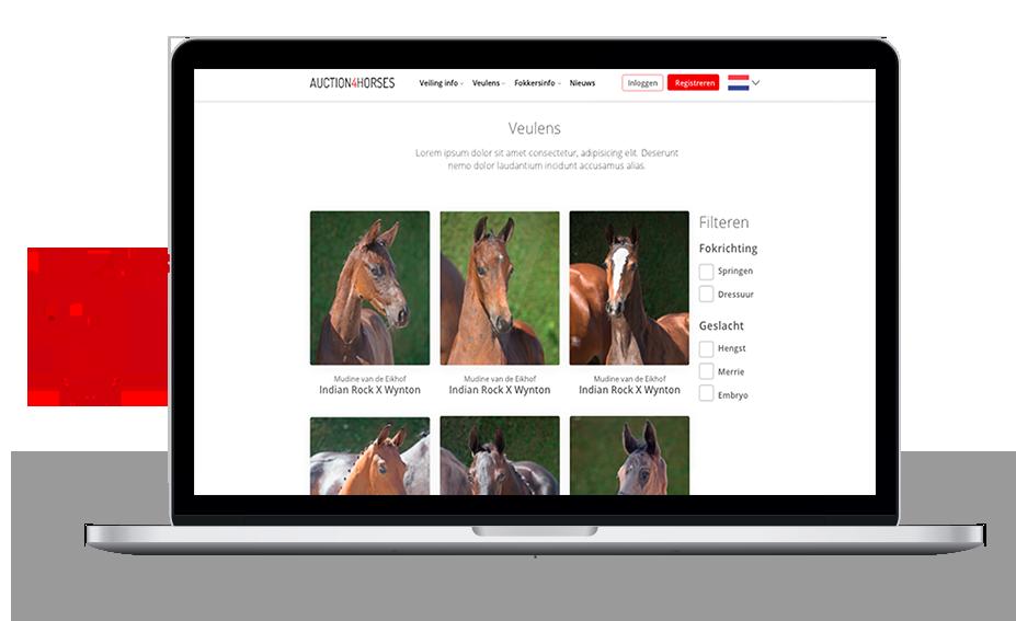 Online paarden veilen