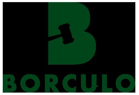 Logo Veulenveiling Borculo